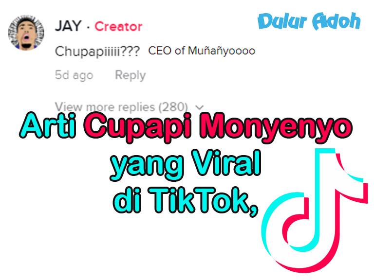 Arti Cupapi Monyenyo yang Viral di TikTok